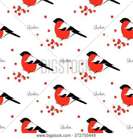 Seamless Pattern With Berries And Bird. Graphic Print With A Bullfinch, Floral Texture On A White Ba
