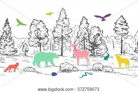 Sketch Vector Horizontal Seamless Border From Trees And Flat Colorful Animals. Color Animals Silhoue