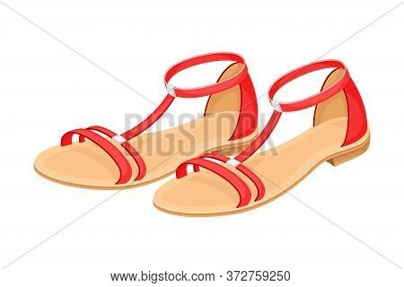 Open Toe Shoes Or Peep-toes On Flat Sole As Summer Women Clothing Vector Illustration