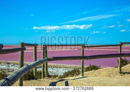 Pink Salt Water Estuary. Salt production on the seashore. The Mediterranean coast of France, the small area of Camargue. Observation deck. The nature reserve includes saltwater and dunes