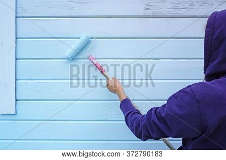 Woman Using Paint Roller To Paint Wall In Blue Paint