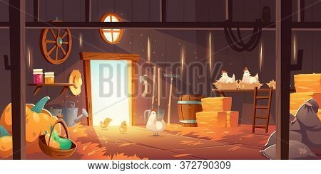 Barn On Farm With Chickens, Straw And Hay. Vector Cartoon Interior Of Old Wooden Shed With Hen Nests