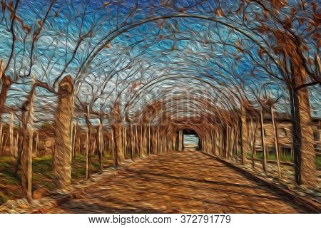 Stone Pathway And Autumnal Arbor Covered By Vineyard Branches With Dried Leaves, From Winery Near Be