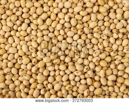 Raw Dehydrated Soybeans Isolated On White Background