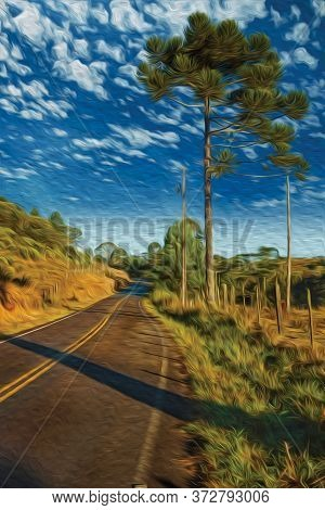Road On Rural Lowlands Called Pampas Alongside Trees And Barbed Wire Fence Near Cambara Do Sul. A Sm