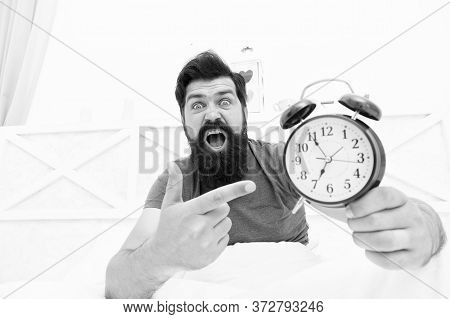 What Time Is It. Stressed Man Alarm Clock. Sleepy Man Holding Alarm Clock In Bed. Bearded Man With A