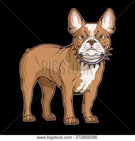 Illustration Of A French Bulldog. Dog For Tattoo Or T-shirt Print. French Puppy Illustration For A S