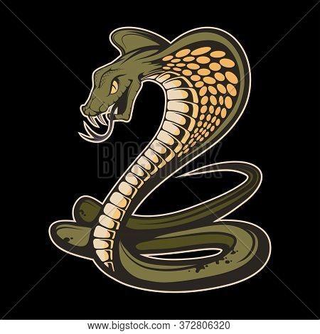 Illustration Of A King Cobra. Snake For Tattoo Or T-shirt Print. Viper Snake Illustration For A Spor