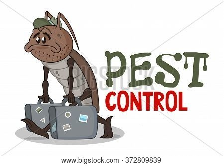 Funny Pest Control Concept With Sad Homeless Cartoon Cockroach. Design For Print, Emblem, T-shirt, S