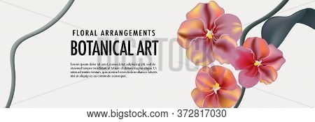 Garden Pansy Pink Bloom Card, Horisontal Floral Banner Template. Red Romantic Bllom Watercolor Desig