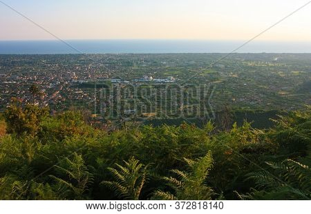 Green Ferns And Panorama From The Apuan Alps And The Mediterranean Sea In Countryside Tuscany