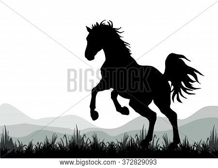 Dark Silhouette Of A Wild Horse Galloping Against The Sky,  Isolated  Monochrome Image