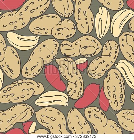 Seamless Pattern Of A Set Of Peanuts & Red Kernels, For Menu Design Or Confectionery, Textiles, Vect
