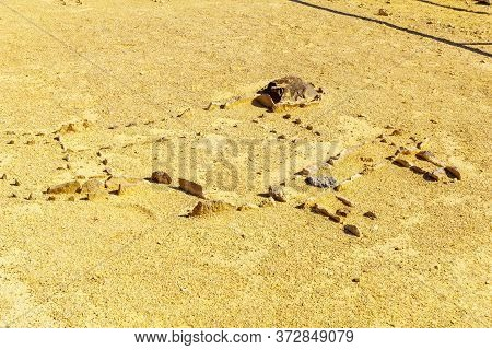 View Of Primitive Mosaics In The Leopard Temple Of Uvda, A 7000-year-old Temple In The Negev Desert,
