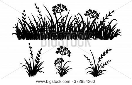 Template Grass Isolated On White Background, Vector Illustration. Cutout Thick Herb Plant. Horizonta