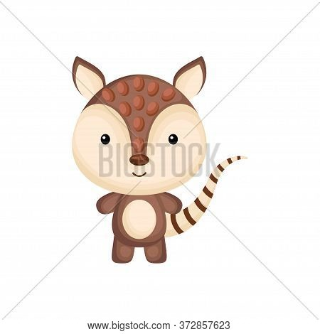 Cute Funny Baby Armadillo Isolated On White Background. Adorable Animal Character For Design Of Albu