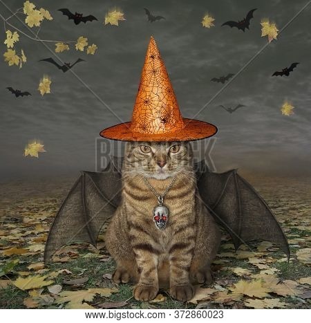 The Beige Cat With Bat Wings Is Wearing A Witch Hat And A Skull Shaped Pendant With Ruby Eyes In The