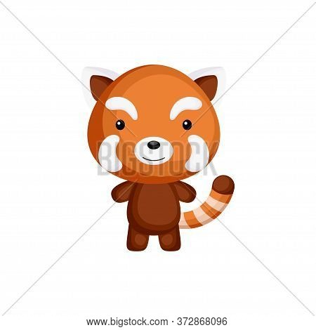 Cute Funny Baby Red Panda Isolated On White Background. Adorable Animal Character For Design Of Albu