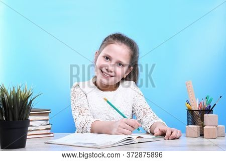 Back To School .happy Cute Industrious Child Is Sitting At A Desk Indoors.he Notes In A Notebook And