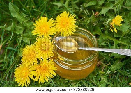 Dandelion Honey, Artificial Honey From Dandelions In A Jar In Dandelion Flowers