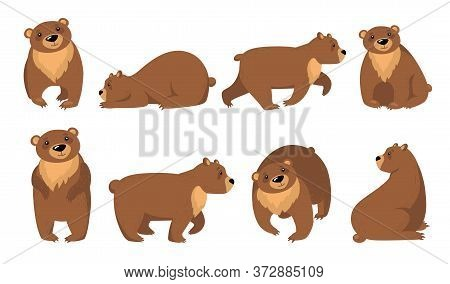 Funny Grizzly Bears Flat Icon Set. Cartoon Cute Brown Bear Standing, Sitting, Walking Isolated Vecto