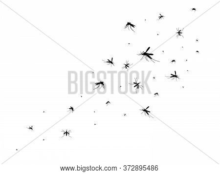 Flying Mosquitoes. Black Silhouette Mosquito, Swarm Flying Insects Spreading Disease Dangerous Infec