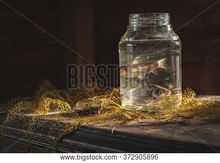 Two Carp Fish In A Glass Jar On The Table With A Fishing Net. Fishing Still Life. Concept Of Fishing