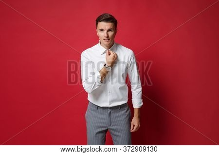 Confident Young Business Man In White Shirt, Gray Pants Posing Isolated On Bright Red Wall Backgroun