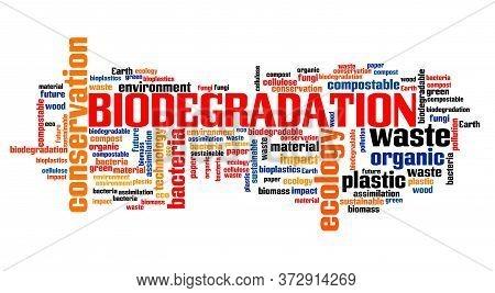Biodegradation Concept Word Cloud Collage. Biodegradation Text Sign.