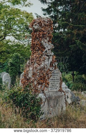 London, Uk - June 16, 2020: Tombstone Covered In Dried Ivy Inside Hampstead Cemetery, A Historic Cem