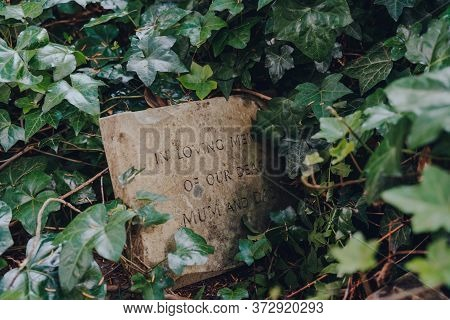London, Uk - June 16, 2020: Tombstone Surrounded By Green Ivy Inside Hampstead Cemetery, A Historic
