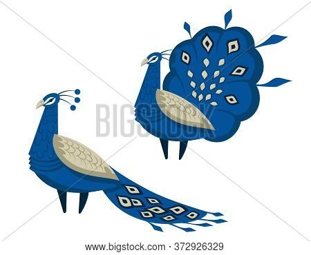 Peacock With A Beautiful Tail. Birds In Cartoon Style Isolated On White Background.