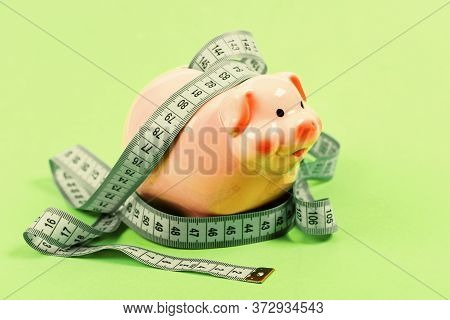 Budget Limit Concept. Financial Consulting. Economics And Finances. Pig Trap. Budget Crisis. Plannin