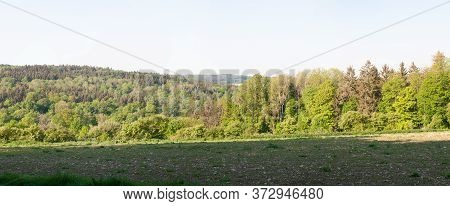Hilly Landscape With Mixed Forest And Stony Field In Swabian Alb