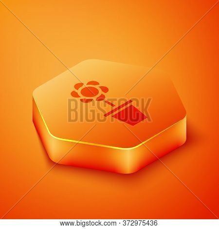 Isometric Flower In Pot Icon Isolated On Orange Background. Plant Growing In A Pot. Potted Plant Sig