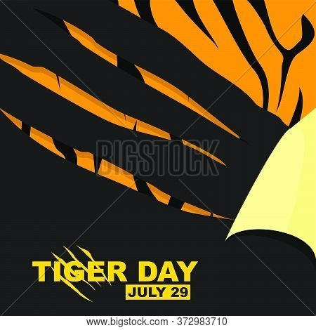 Tiger Day Vector Illustration With Scratching Tiger Of Paper. Tiger Fur Texture For Background Desig