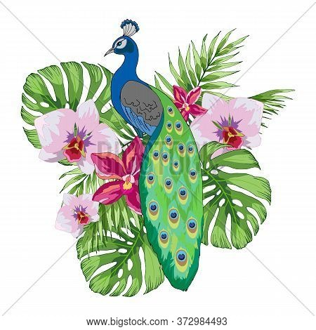 Composition Of Tropical Plants And Peacock, Vector Illustration For Different Design