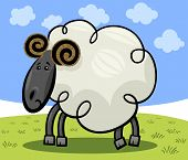 Illustration of Cute Ram or Sheep Farm Animal Cartoon Character on the Pasture poster