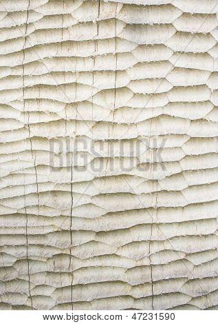 Craven Wood Background