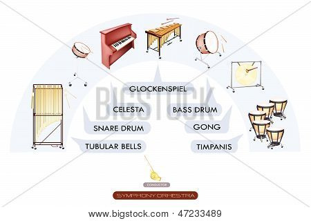 Seating Chart Of Percussion Instrument For Symphonic Band