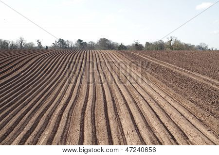 wide shot of a ploughed field