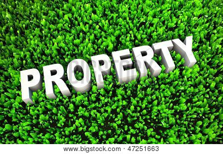 Growing Property Wealth and Wise Growth of Money