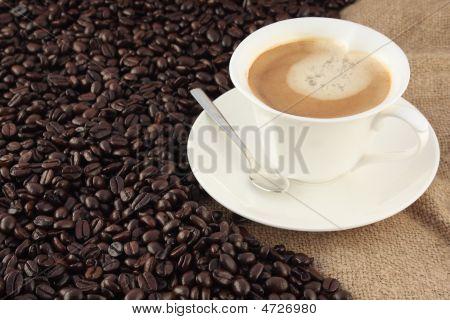 Someone Coffee?