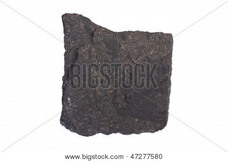 Boghead Coal Torbanite