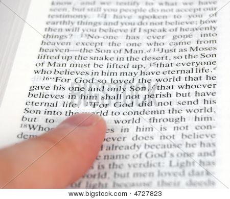 John Chapter 3 Verse 16