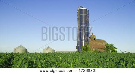 Rural Country Farm