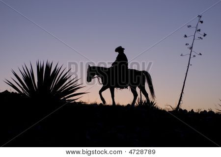 Silhouetted Cowboy