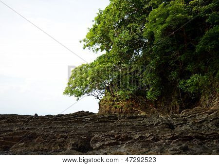 Steep Rocks And Trees In Wilderness Of Panama