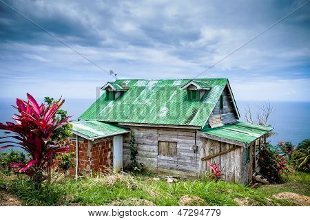 Green Roof in the Tropics