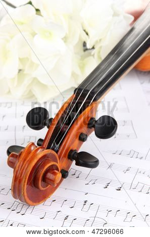 Classical violin  with flowers on notes poster